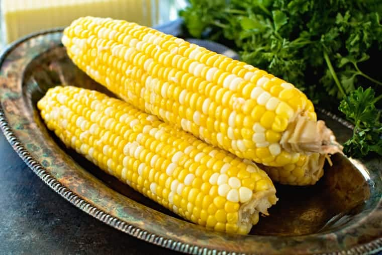 Grilled corn on metal plate