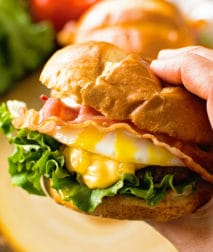 Hamburger with Fried Egg in Hand