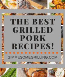 Grilled Pork Recipes Collage. Eight background images of grilled pork behind text reading the best grilled pork recipes