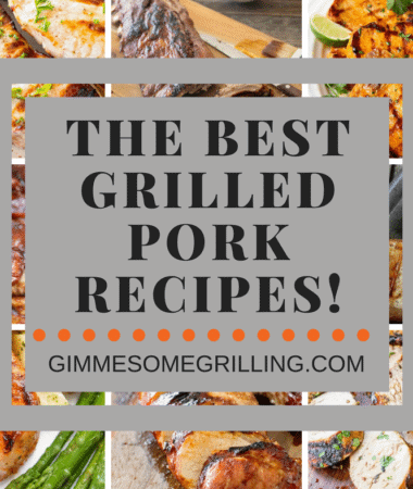 Grilled Pork Recipes Collage Pinterest Portrait