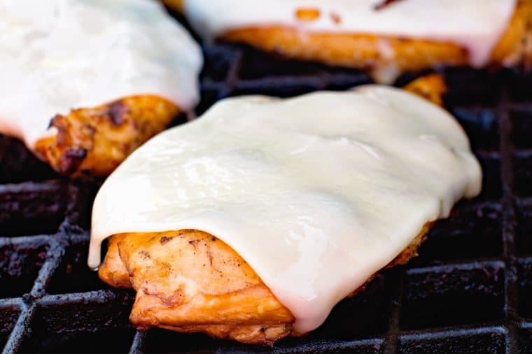 Teriayki Chicken breast with cheese slice