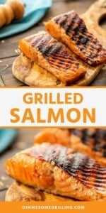 grilled salmon Pins