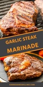 garlic-steak-marinade-Pins-compressor